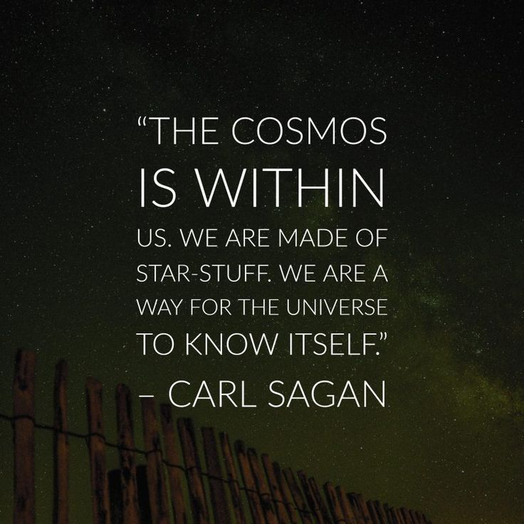 The Cosmos Is Within Us. We Are Made Of Star Stuff, We Are
