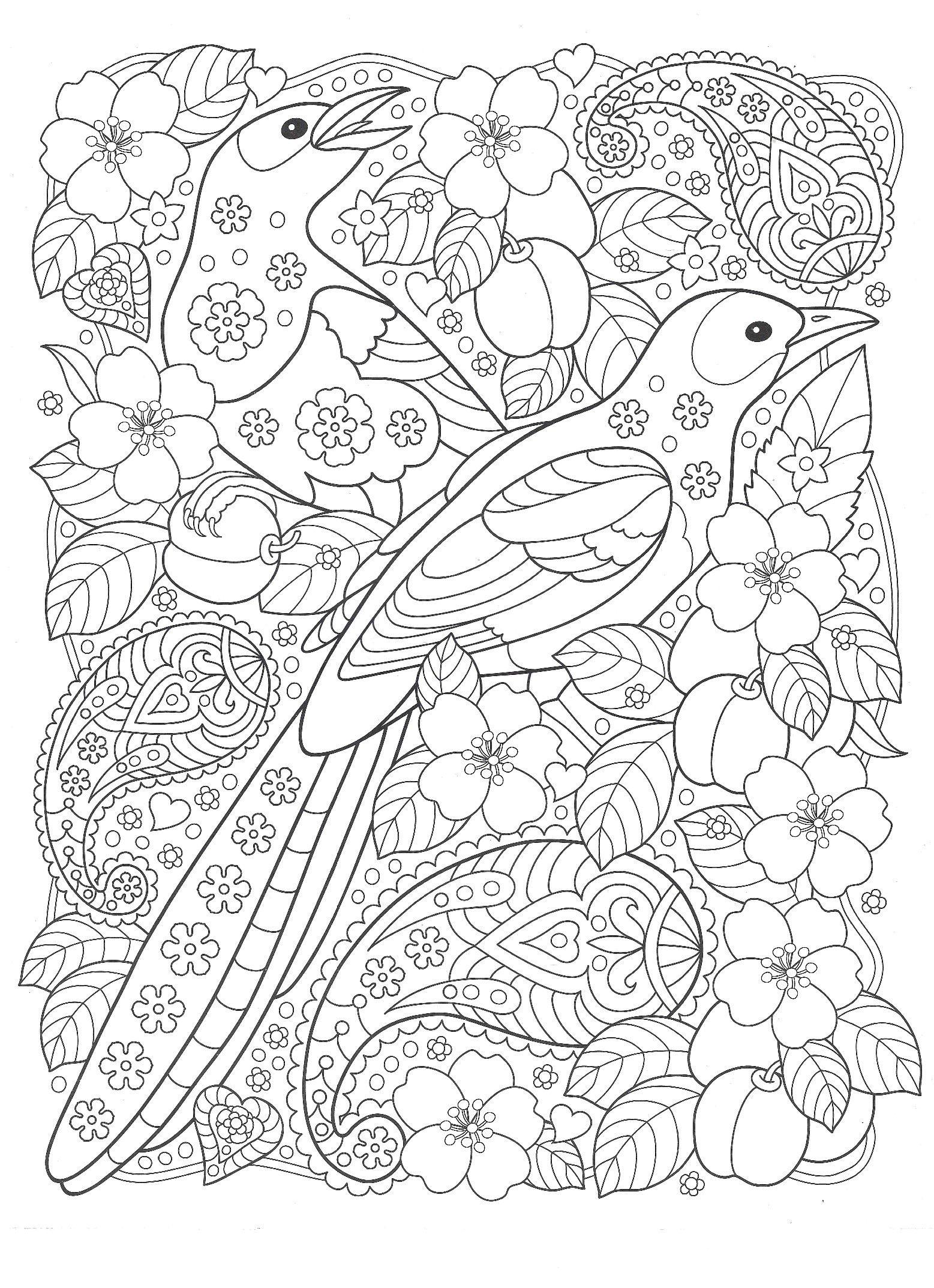 Раскраски «Птицы» - «Птицы с цветами» | Mandala coloring ...