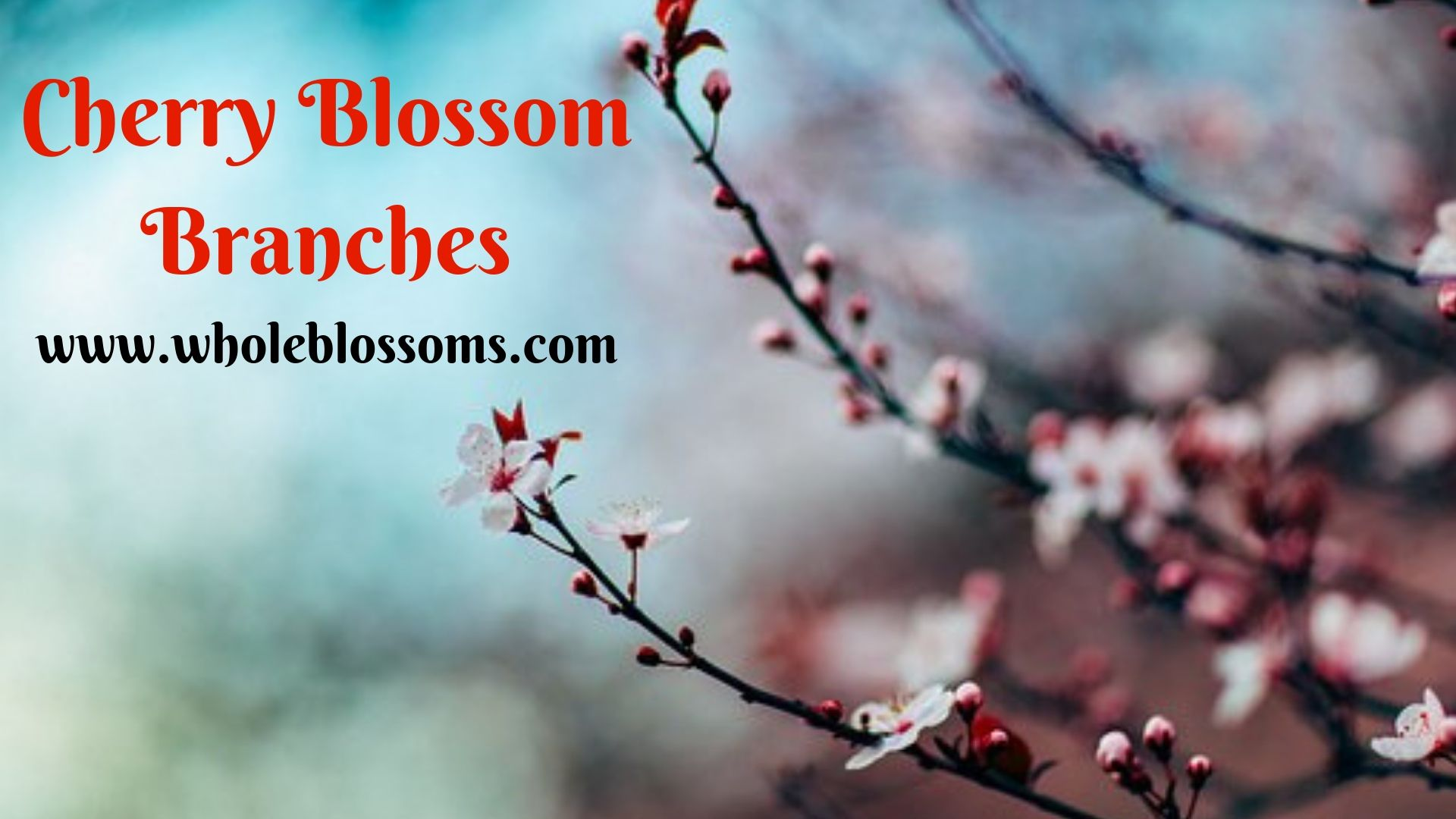 Branches Are Available At Minimum Prices For Distinctive Occasions And Memorable Day They Come In Cherry Blossom How To Memorize Things Cherry Blossom Branch