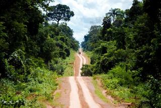 Pregopontocom Tudo: Amazônia ameaçada: guardiões lutam para manter a manter a floresta em pé...