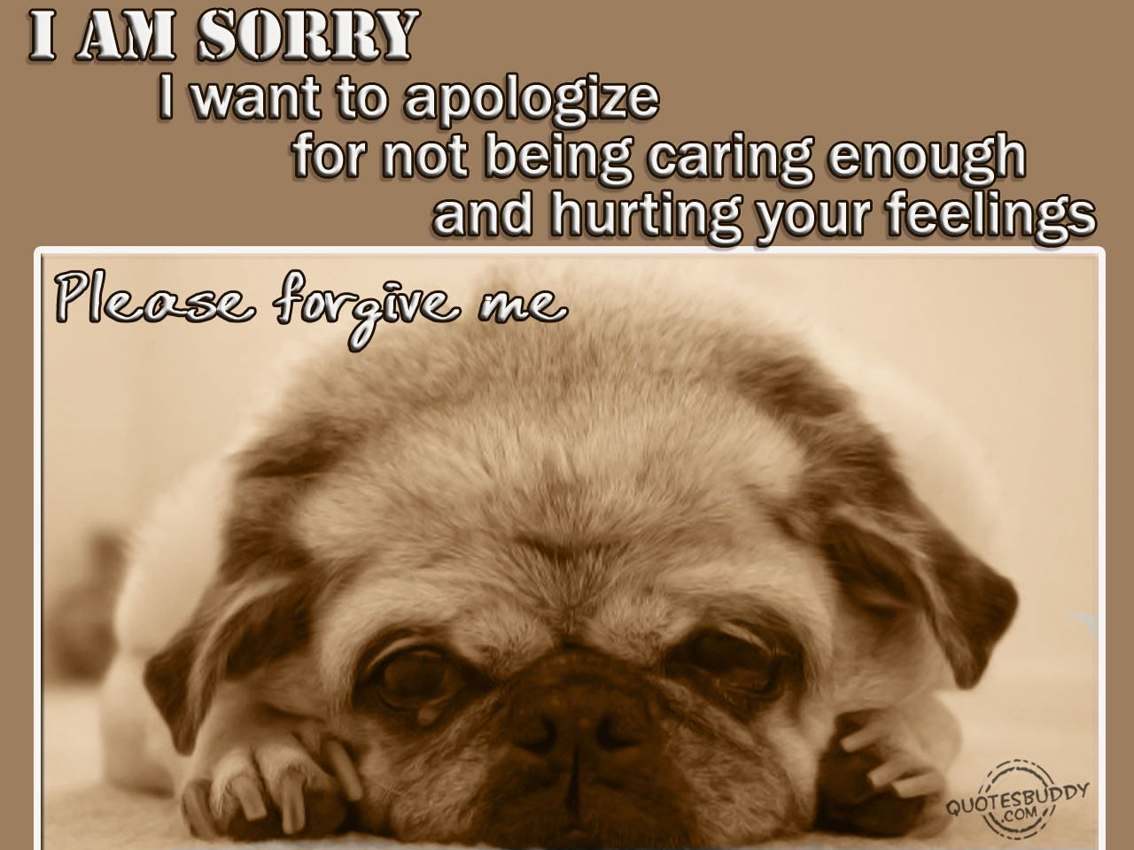 Pin By Eagle Wings On Im Sorry Sorry Quotes Quotes Love Quotes
