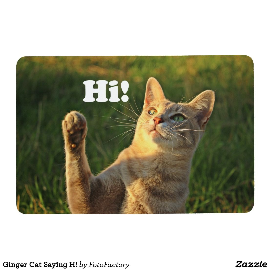 Ginger Cat Saying H Floor Mat Zazzle Com Cat Quotes Cat Drinking Ginger Cats