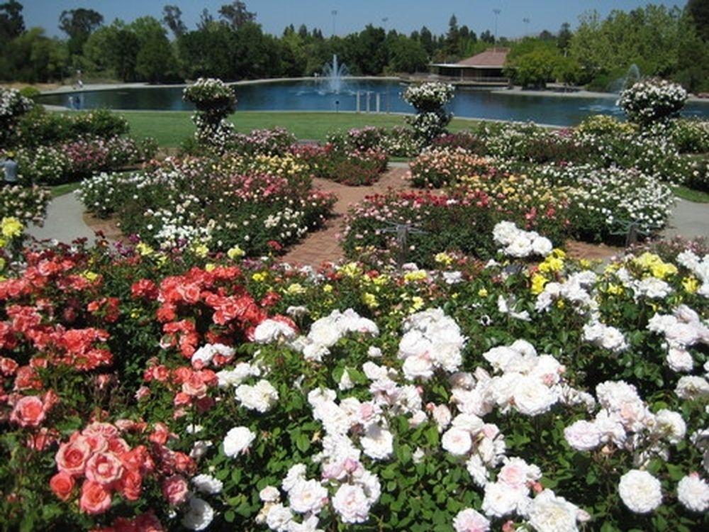 Aas Display Garden Gardens At Heather Farm In Walnut Creek Ca Community Park Public Garden Walnut Creek California