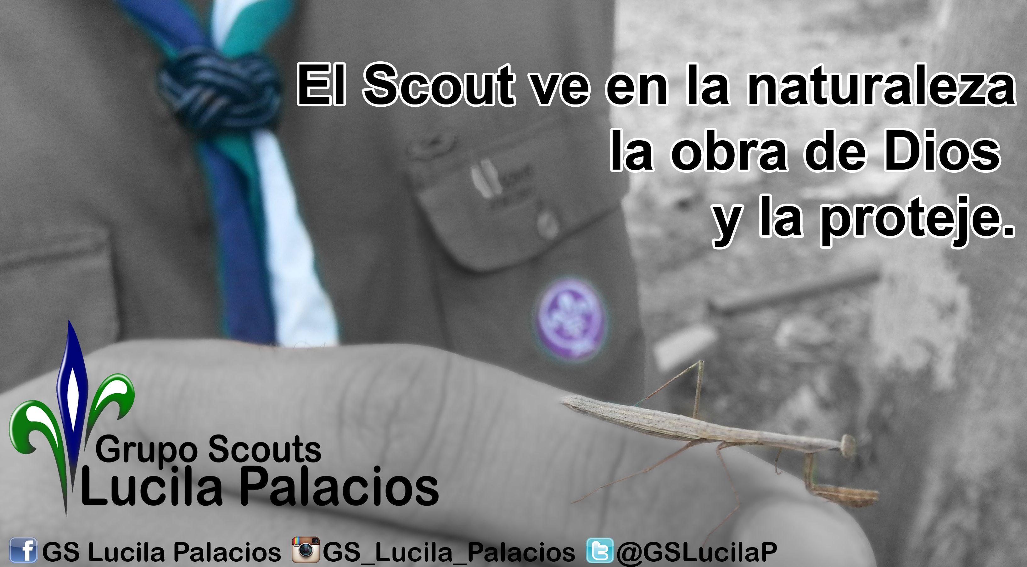 El Scouts ve en la naturaleza la obra de Dios, y la porteje