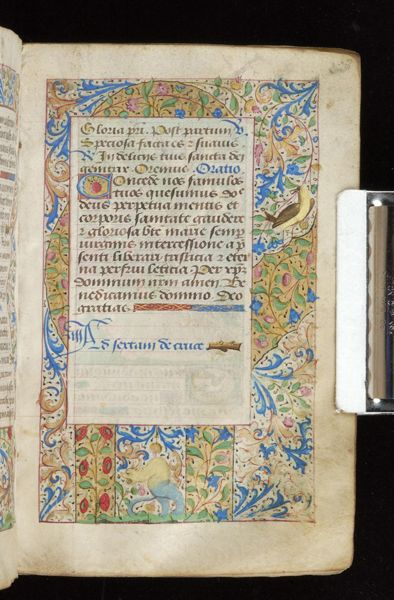 Book of Hours, MS M.815 fol. 67r - Images from Medieval and Renaissance Manuscripts - The Morgan Library & Museum