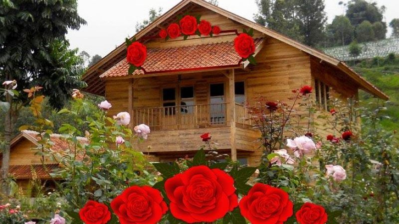 Taman Bunga Di Garut