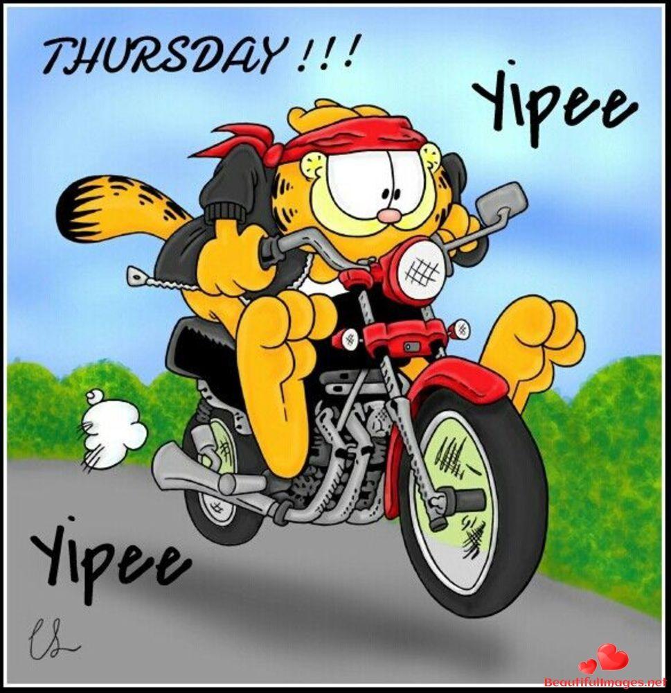 Открытка днем, картинка с днем мотоциклиста