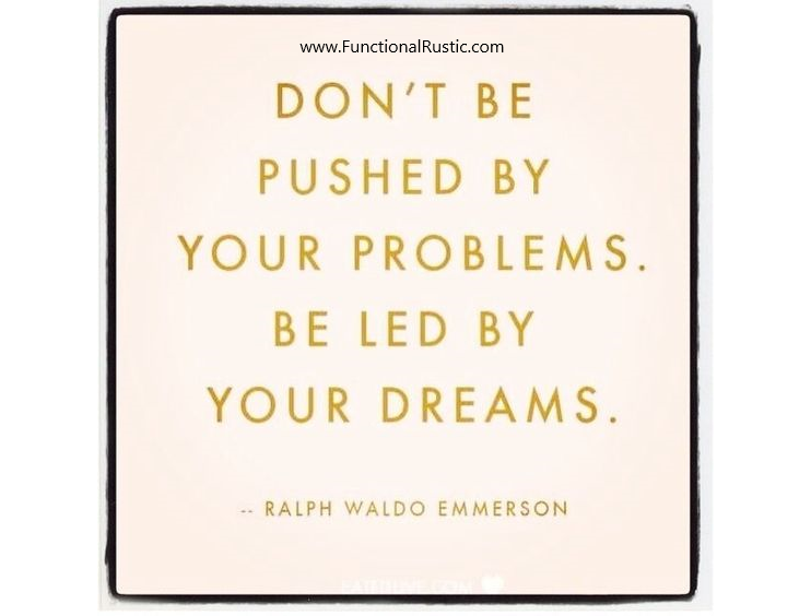 Dont Be Pushed By Your Problems Be Led By Your Dreams Www