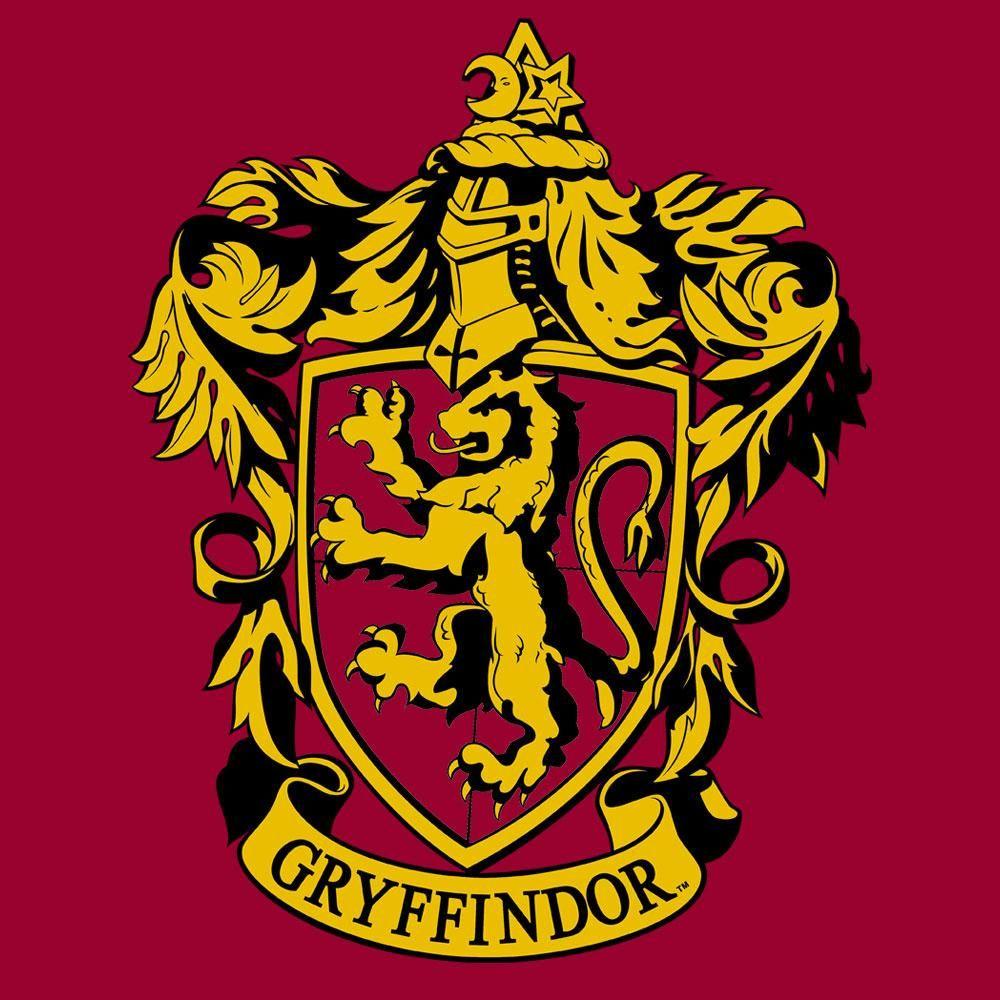Gryffindor Crest (Variant) Juniors Tshirt Harry potter