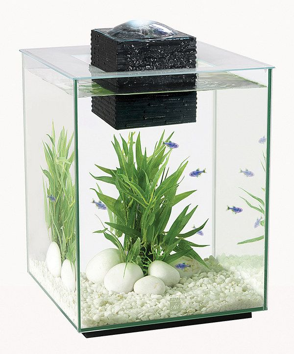 Look at this Fluval Chi 5-Gal. Aquarium Set on #zulily ...