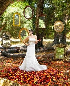 Snow White themed wedding, this is a great dress, looks very much ...