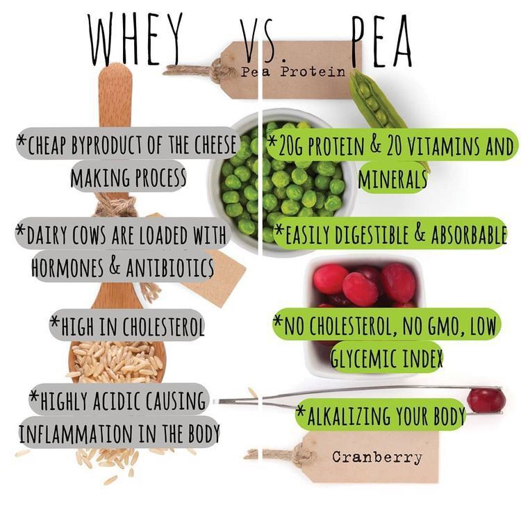 Whey Vs Pea Protein Arbonne Nutrition Arbonne Protein Arbonne Recipes