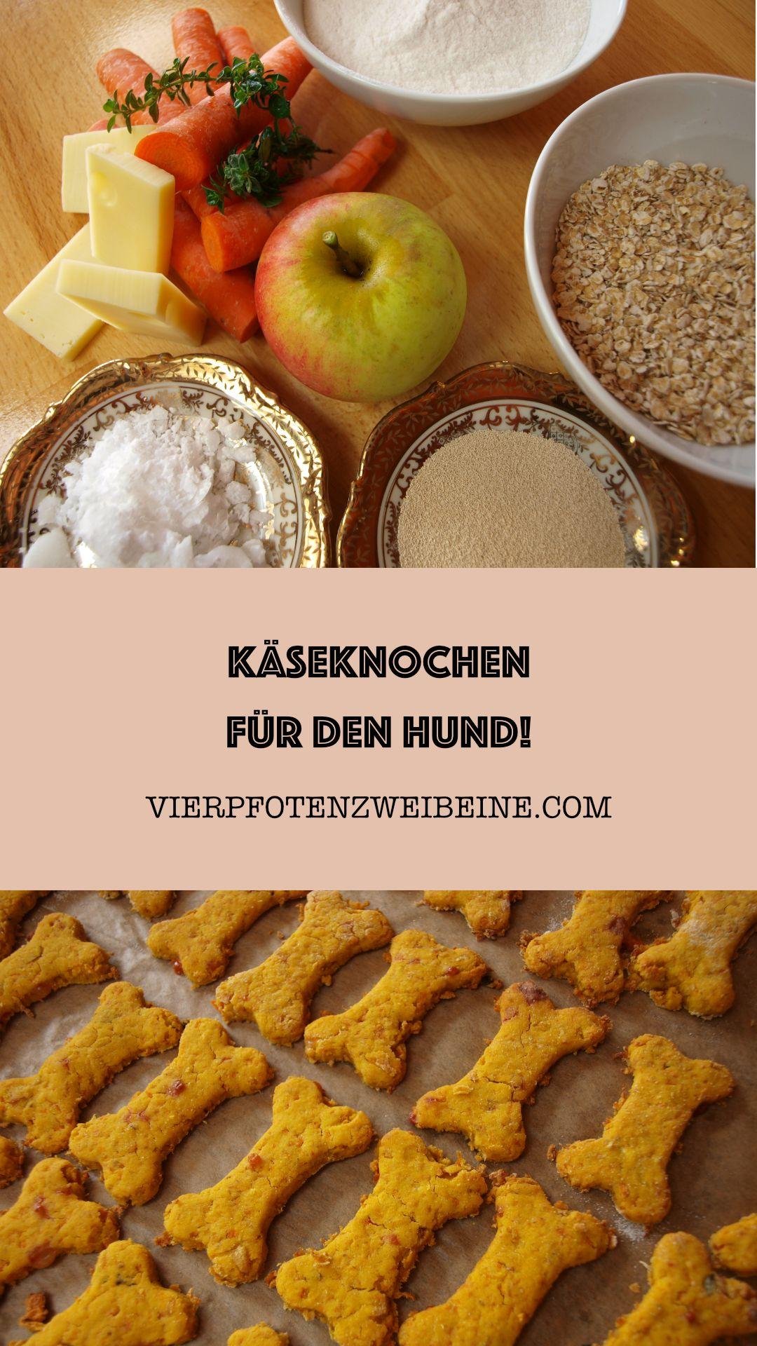 Käse – Karotten – Apfel – Reis – Haferflocken Hundekekse. Leckere Käseknochen-Leckereien!