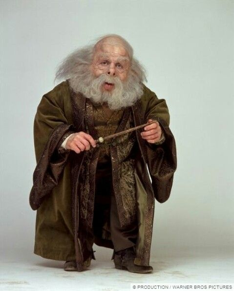 Filius Flitwick Harry Potter Wiki First Harry Potter Harry Potter Characters