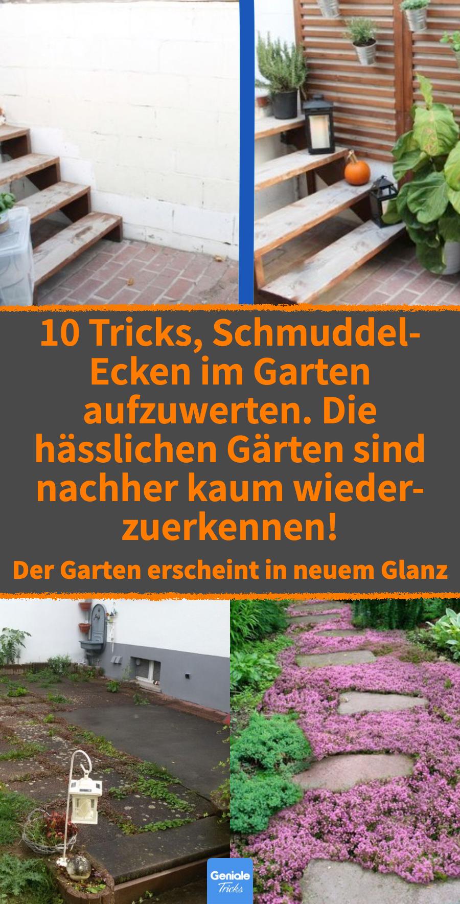 Photo of 10 astuces pour améliorer les coins sales du jardin.