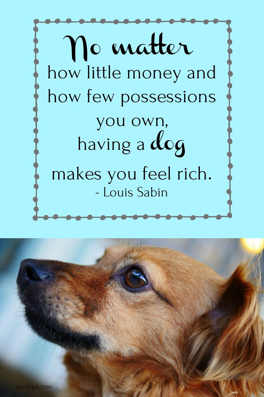 Dog Quotes Dog Love Puppy Peggy S Pin Pals Pinterest