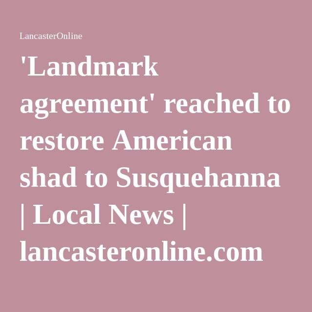 'Landmark agreement' reached to restore American shad to Susquehanna | Local News | lancasteronline.com