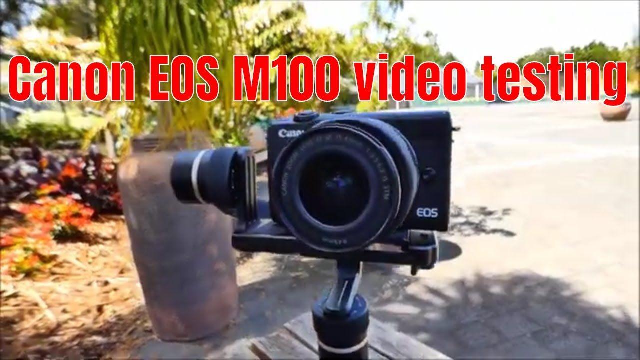 Canon Eos M100 Photos And Videos Testing Eos Canon Eos Used Cameras