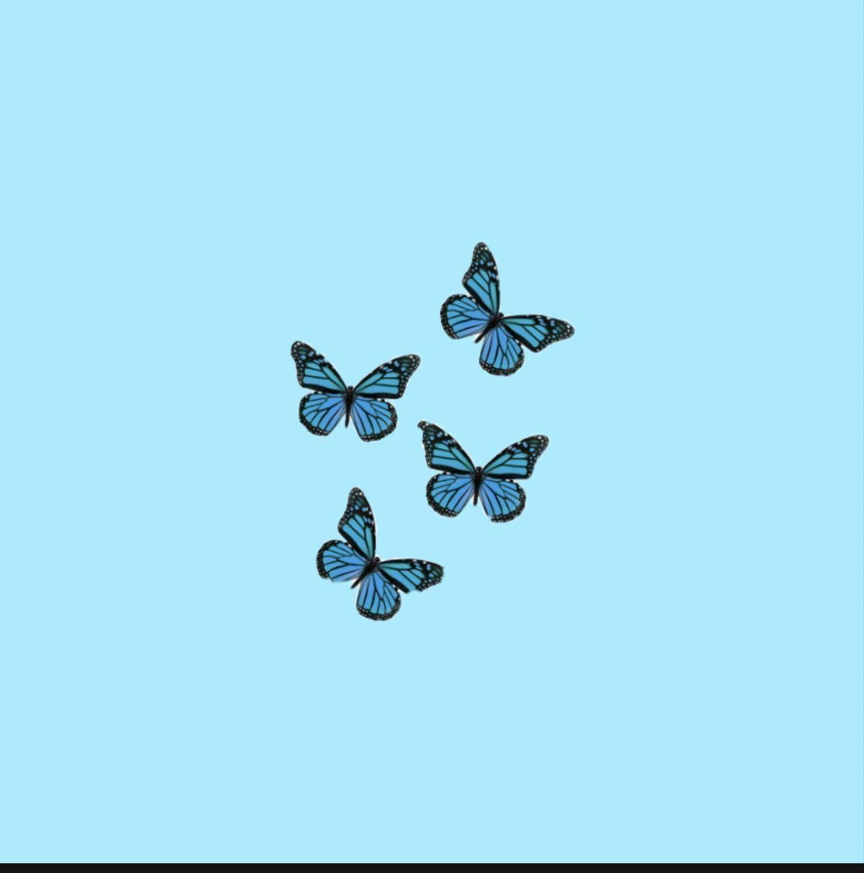 Aesthetic Butterfly Wallpaper In 2020 Blue Aesthetic Pastel Light Blue Aesthetic Baby Blue Aesthetic