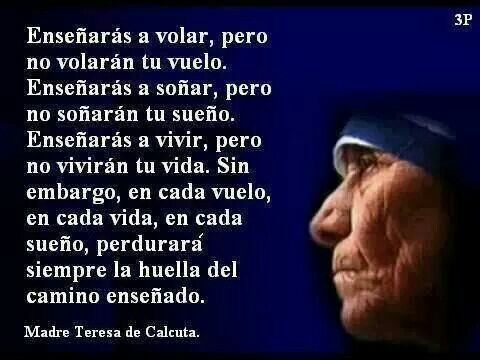 Madre Teresa Padres De Familia Citas Frases Y Motivaciones
