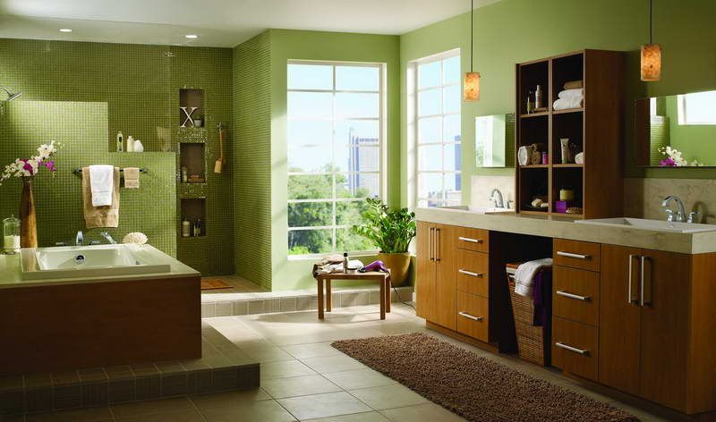 Delta Faucets Bathroom With Green Walls Http Lanewstalk The Elegant