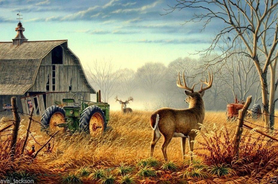 deer and turkey wall murals Google Search Deer