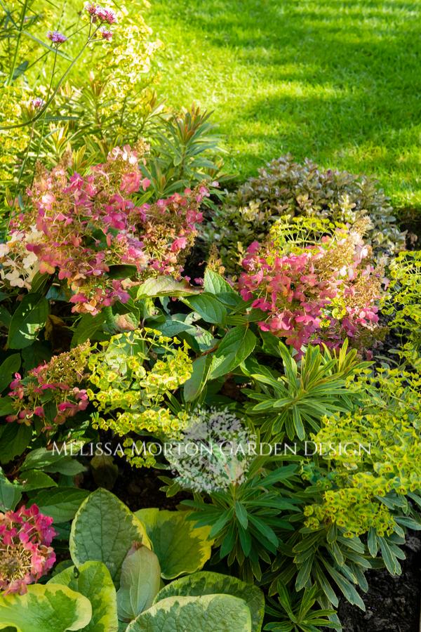 Small Space Garden Menston Ilkley Small Space Gardening Entertaining Garden Low Maintenance Garden Design