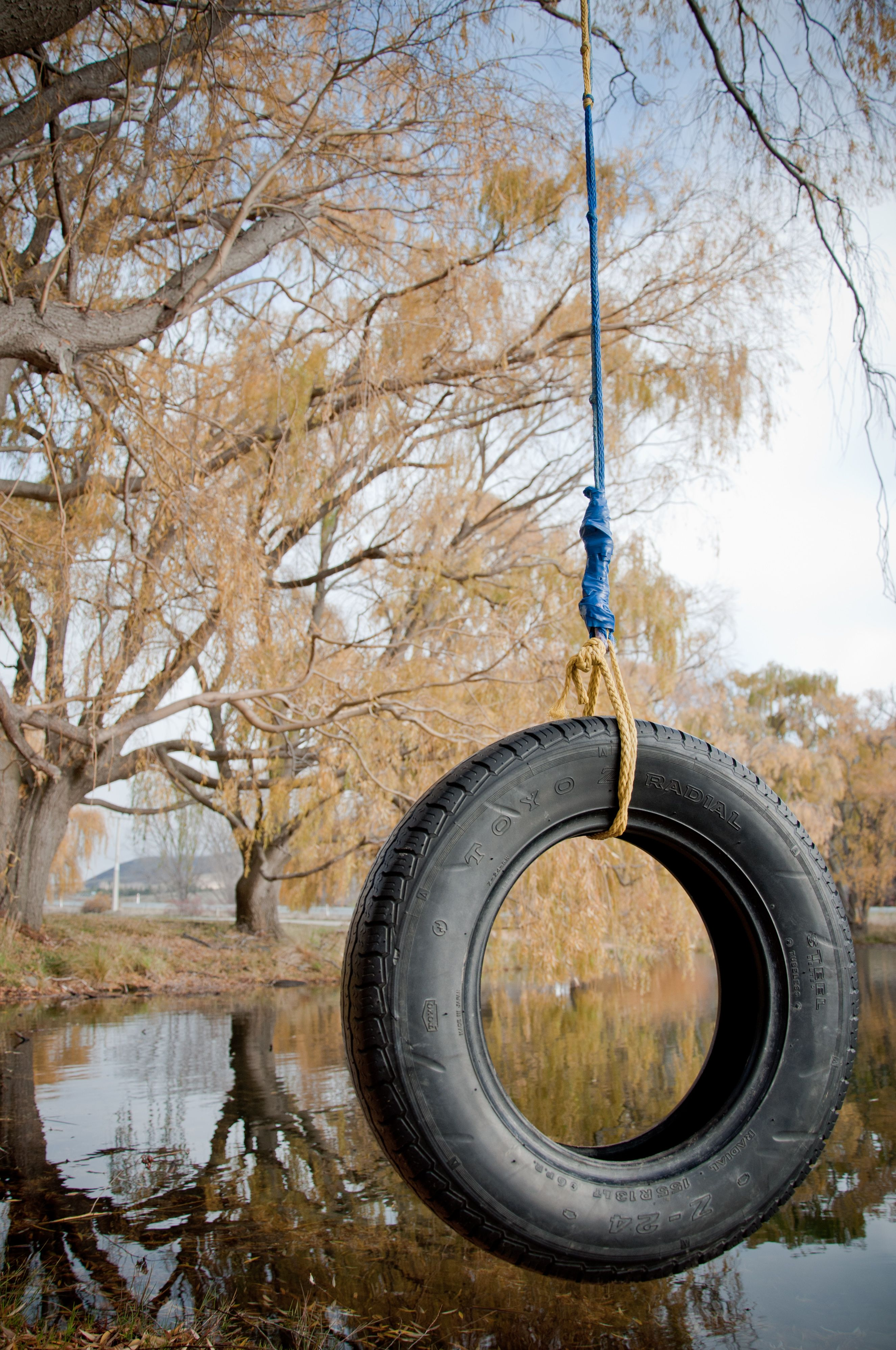 Tree swing meme what the customer really wanted - Just A Tire Swing But It Reminds Me Of A Time When I Was A Little