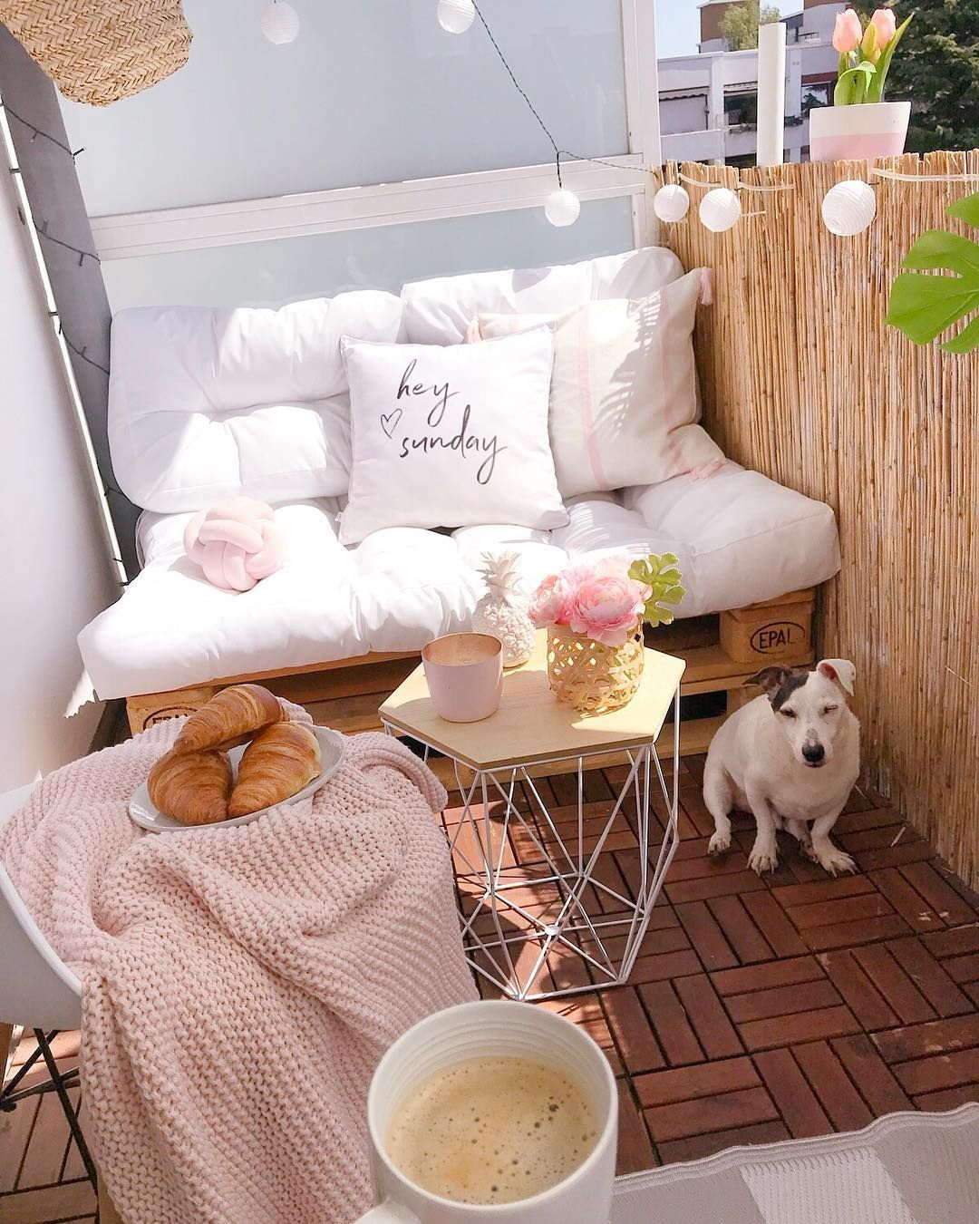 That's what cozy life looks like - still sleeping at noon ???????????? Just have a look at Gismo ???? I will pick up my besties… #smallbalconyfurniture