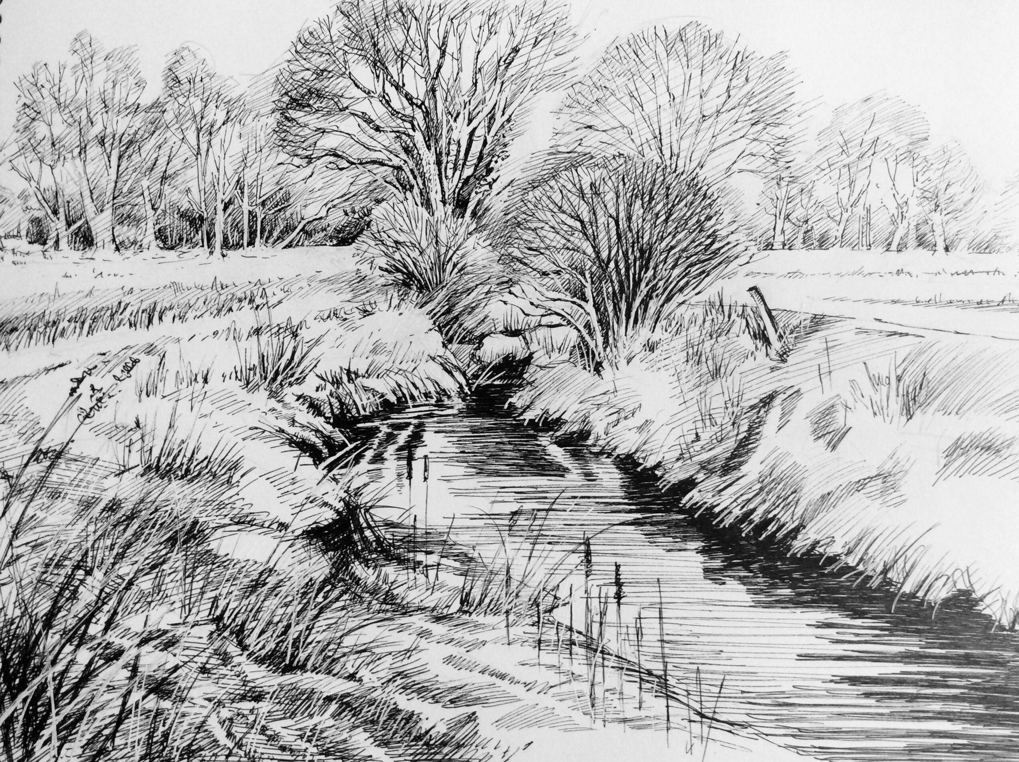 Trees in the Landscape 2. 2015. Pen & Ink. Glyn Overton ...