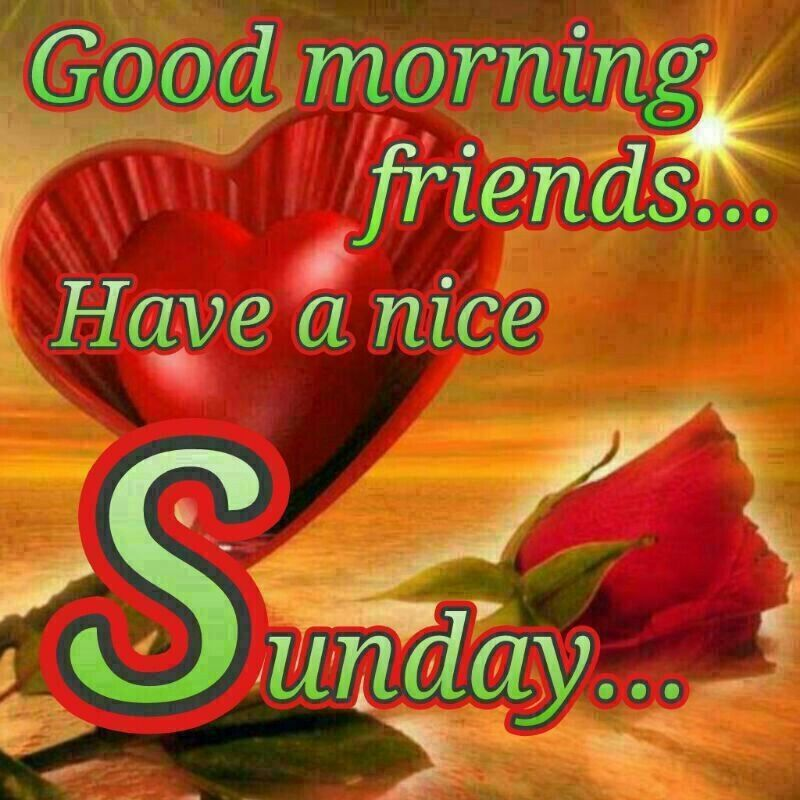good morning friends have a wonderful sunday