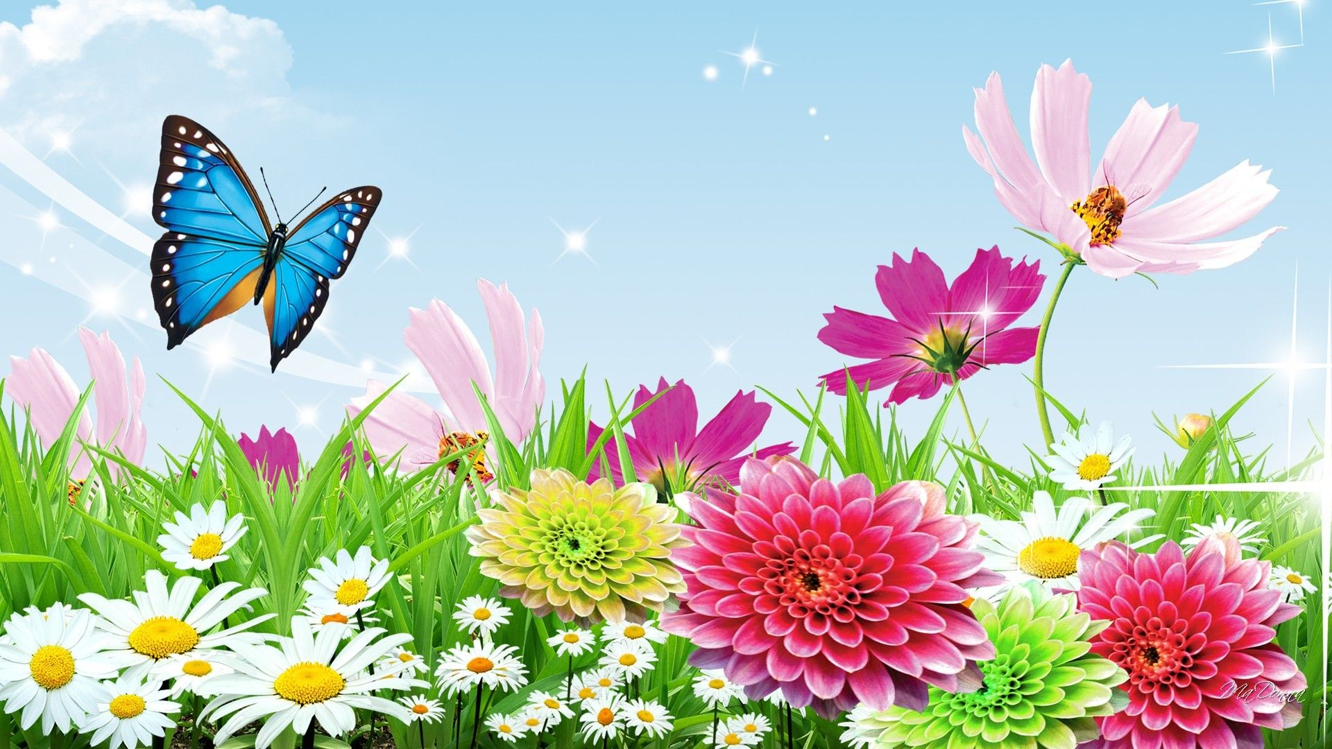 Spring Butterfly Wallpaper Widescreen On Wallpaper 1080p Hd Hd