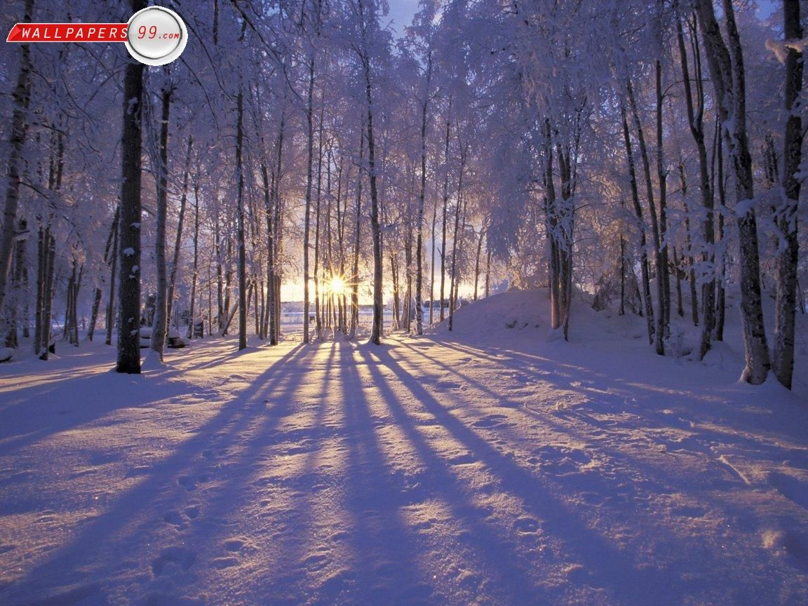 free winter scenes wallpapers photos pictures images free 1152x864
