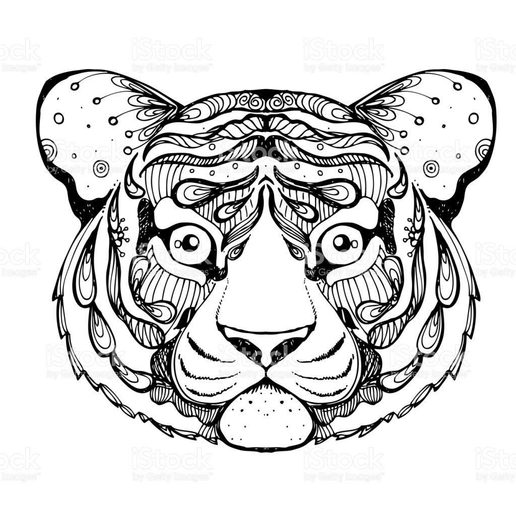Hand Drawn Ink Doodle Tiger On White Background Coloring Page