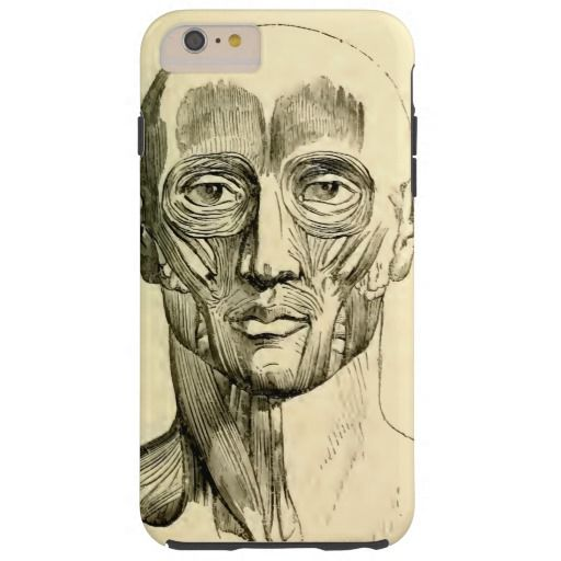 Vintage Anatomy | Muscles of the Face (circa 1852) Tough iPhone 6 Plus Case