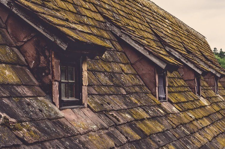 5 Ways To Keep Your Roof Replacement Budget On Track Roof Framing Shingling Metal Roof
