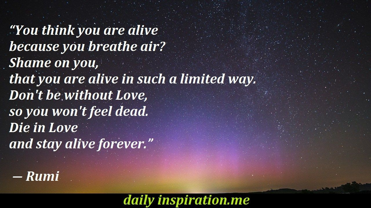 Rumi Love Quotes Rumi Love Quotes  Logical Quotes  Pinterest  Inspirational