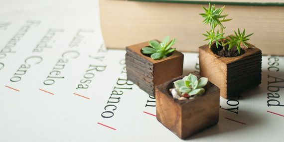 Succulent Planter Box Small Wooden Wedding Gift Reclaimed Wood