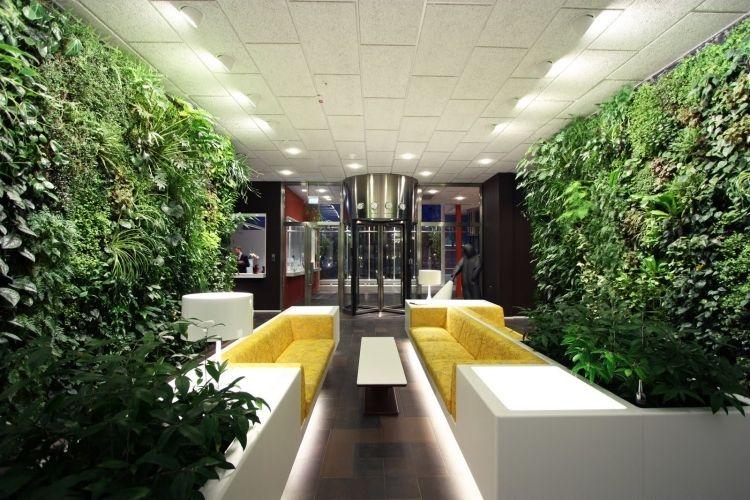 vertikaler-garten-couches-gelb-polster-indirekte-beleuchtung - haus mit indirekter beleuchtung bilder