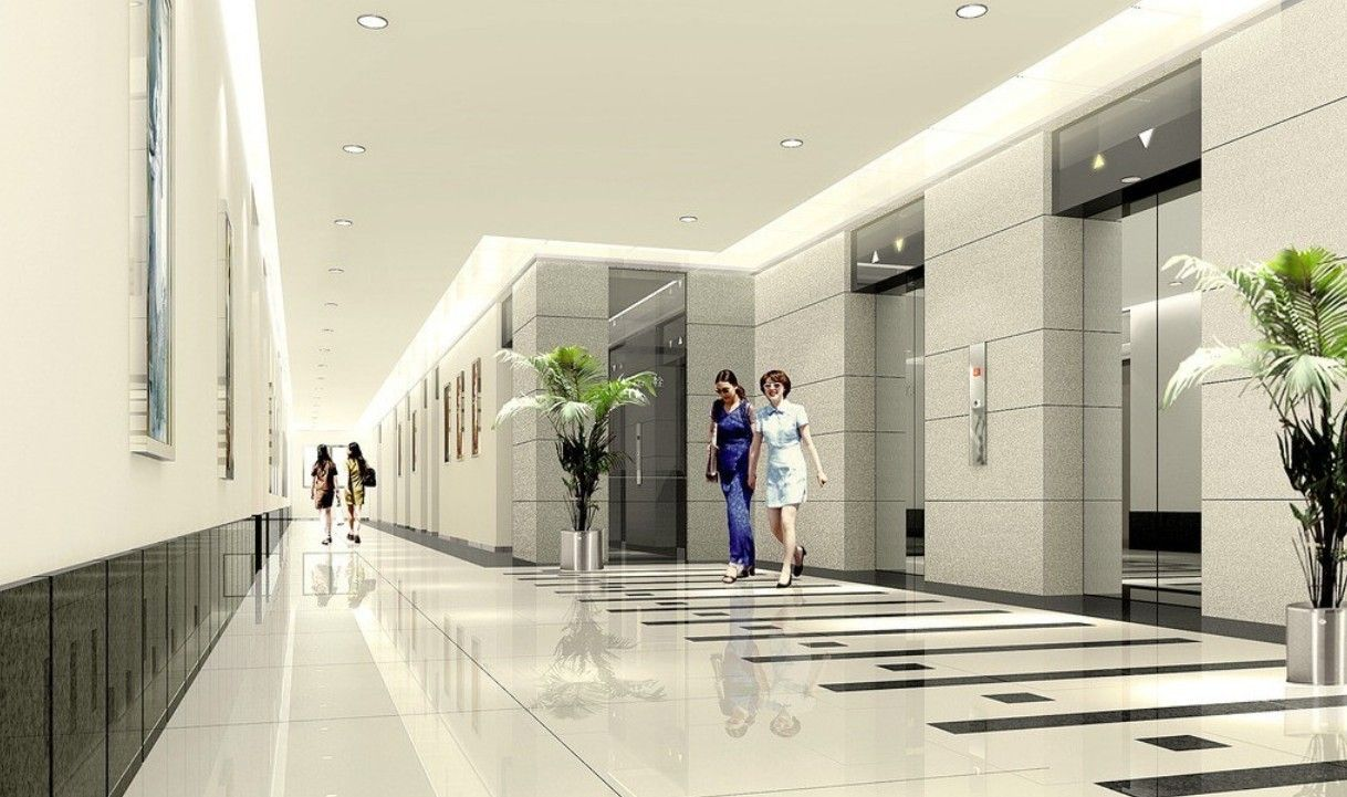 Modern Office Interior Design Inside Luxurious Lift Lobby With Ceiling Lighting And Natural Green Plant Vase Decor Idea