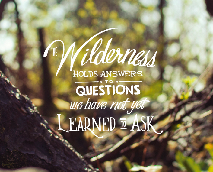 Pin By Michelle Johnston On Typography Love This Or That Questions Wilderness Quotes Nature Quotes