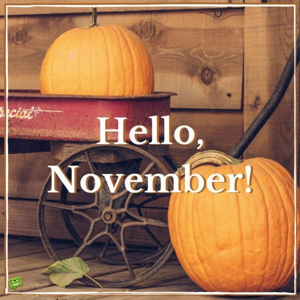 Hello, November! #hellonovemberwallpaper Hello, November! #hellonovemberwallpaper Hello, November! #hellonovemberwallpaper Hello, November! #hellonovemberwallpaper