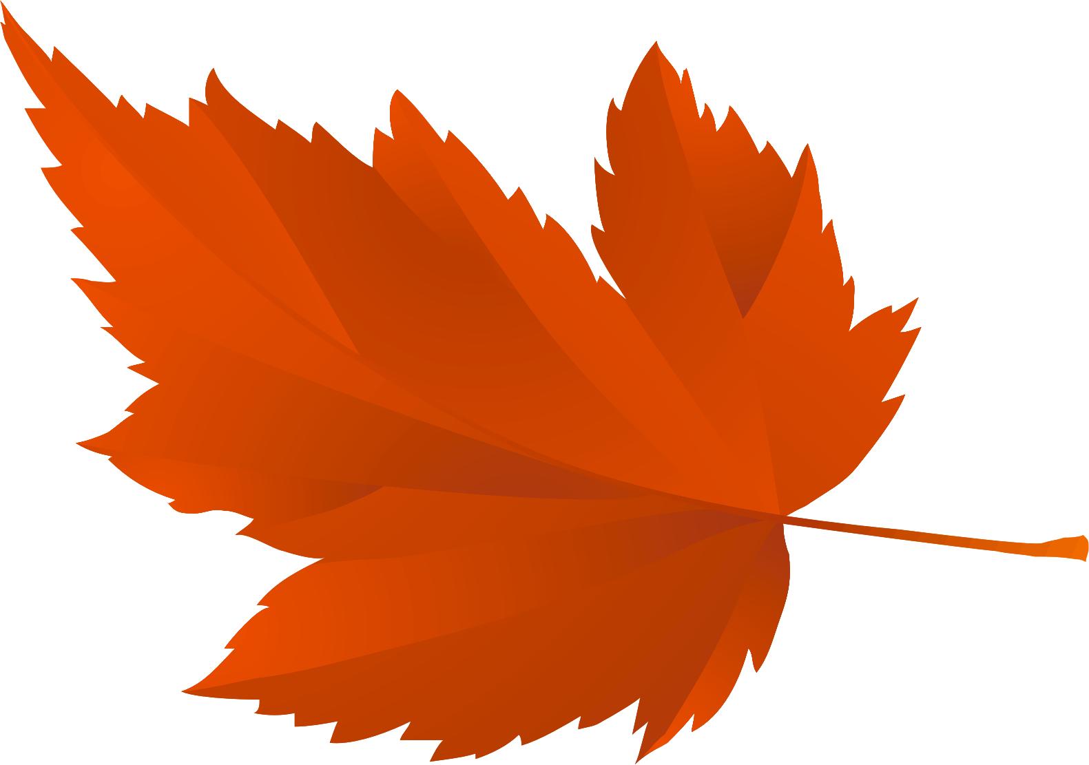 Картинки осень листья для детей, сегодня выходной найти