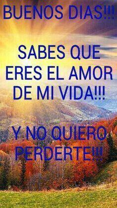 Amor Mio Tu Tambien Eres El Amor De Mi Vida Te Amo Simplemente Me