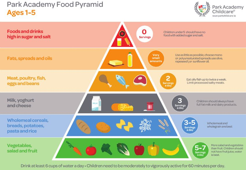 Food Pyramid for 15 Year Old Children Park Academy