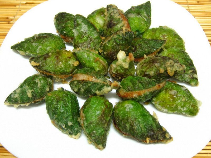 這綠色的葉子是原住民的樹豆葉子,必須爬高高才採收得到;它的種子---樹豆,拿來做料理也相當美味。 葉子外表好像海瓜子的型,翻開來也很美麗。造型特殊。我今天...