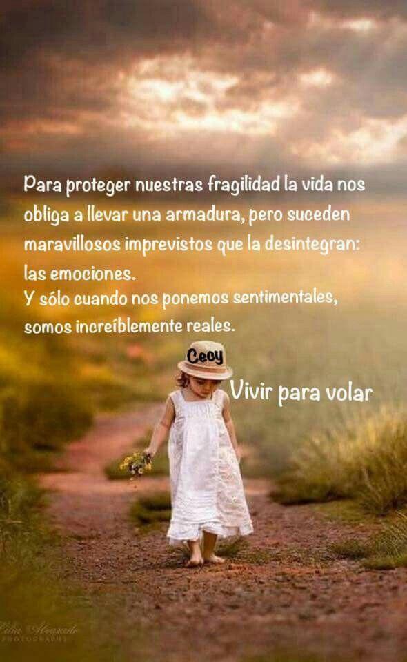 Emociones Frases Positivas De La Vida Frases Bonitas Frases De Valores