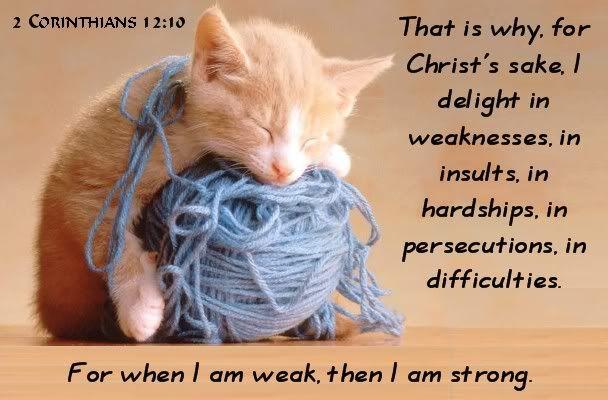 Image result for let the weak say i am strong kjv