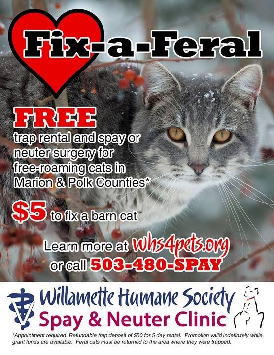 Salem, OR Willamette Humane Society $5 #spay #spayday | Stop animal  cruelty, Humane society, Polk county