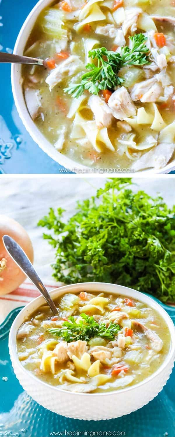the world's best homemade chicken noodle soup recipe  flu